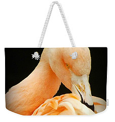 Weekender Tote Bag featuring the photograph Shy by Clare Bevan