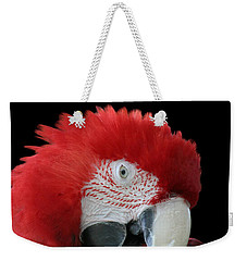 Shy Macaw Weekender Tote Bag by Judy Whitton