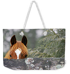 Shyness Weekender Tote Bag by Michelle Twohig