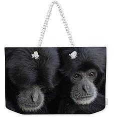 Siamang Pair Weekender Tote Bag