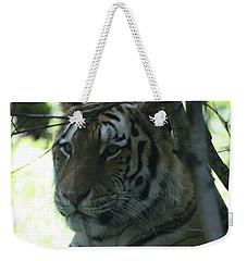 Siberian Tiger Profile Weekender Tote Bag by John Telfer