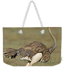 Side Profile Of An Ostrich Running Weekender Tote Bag