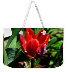 Sign Of Spring Weekender Tote Bag