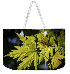 Silver Maple Weekender Tote Bag