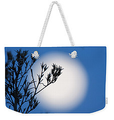 Weekender Tote Bag featuring the photograph Silver Sage by Jim Garrison