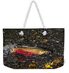 Silver Salmon Spawning Weekender Tote Bag by Doug Lloyd