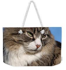 Silver Tabby Cat Weekender Tote Bag