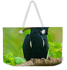 Silvery-cheeked Hornbill Perching Weekender Tote Bag