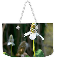 Weekender Tote Bag featuring the photograph Simple Flower by Laurel Powell