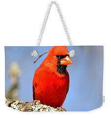 Weekender Tote Bag featuring the photograph Simply Red by Deena Stoddard