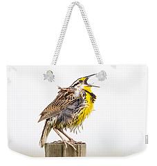 Singing Meadowlark 3rd Of 3 Weekender Tote Bag