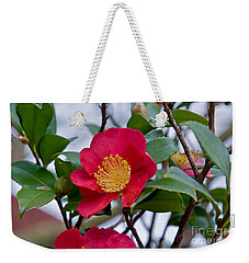 Single Petal Red Camellia Flowers Art Print Weekender Tote Bag