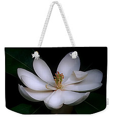 Weekender Tote Bag featuring the photograph Sweet White Magnolia Bloom by Louise Kumpf
