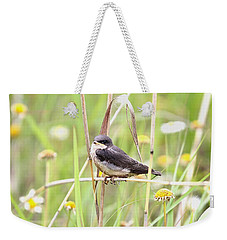 Weekender Tote Bag featuring the photograph Sitin' Pretty by Elizabeth Winter