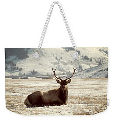 Sitting Bull Elk Weekender Tote Bag by Juli Scalzi