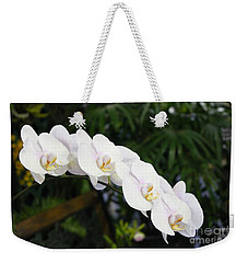 Weekender Tote Bag featuring the photograph Tranquility by The Art of Alice Terrill