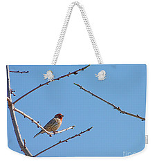 Sky Blue Beauty Weekender Tote Bag