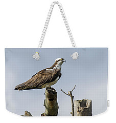 Sky Hunter 2 Weekender Tote Bag