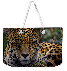 Sleeping Jaguar Weekender Tote Bag