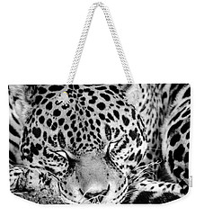Weekender Tote Bag featuring the photograph Sleeping by Steven Santamour