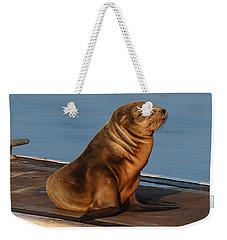 Sleeping Wild Sea Lion Pup  Weekender Tote Bag