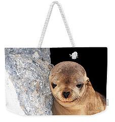 Sleepy Baby Sea Lion Weekender Tote Bag