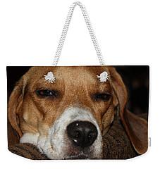 Sleepy Beagle Weekender Tote Bag by John Telfer