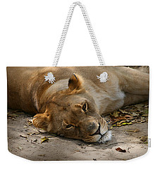 Sleepy Lioness Weekender Tote Bag by Ann Lauwers