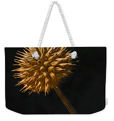Sliding Down Weekender Tote Bag