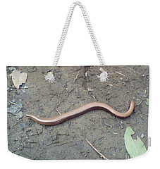 Slow Worm Weekender Tote Bag by John Williams