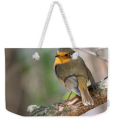 Small Bird Robin Weekender Tote Bag