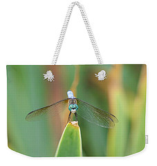 Smiling Dragonfly Weekender Tote Bag by Karen Silvestri