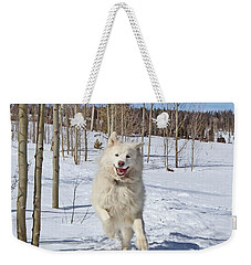 Smiling From Ear To Ear Weekender Tote Bag by Fiona Kennard