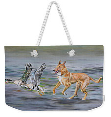 Smooth Collie Trying To Herd Geese Weekender Tote Bag