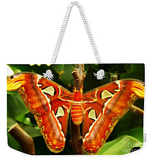 Weekender Tote Bag featuring the photograph Snake Head by Clare Bevan