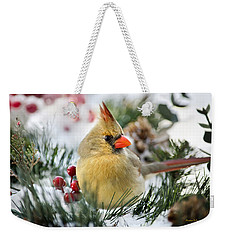 Weekender Tote Bag featuring the photograph Snow Cardinal by Christina Rollo