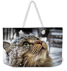Snow Cat Weekender Tote Bag by Shane Holsclaw