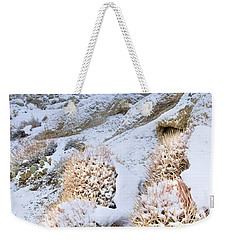 Weekender Tote Bag featuring the photograph Snow Covered Cactus Below Mount Whitney Eastern Sierras by Dave Welling