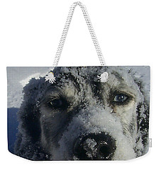 Snow Dog Weekender Tote Bag