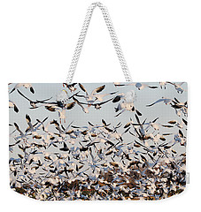 Snow Geese Takeoff From Farmers Corn Field. Weekender Tote Bag