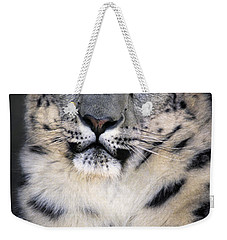 Weekender Tote Bag featuring the photograph Snow Leopard Portrait Endangered Species Wildlife Rescue by Dave Welling