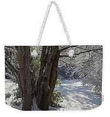 Snow Sparkles Weekender Tote Bag by Dianne Cowen
