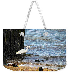 Snowy Egret At The Shore Weekender Tote Bag