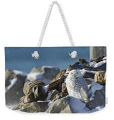 Snowy Owl On A Rock Pile Weekender Tote Bag