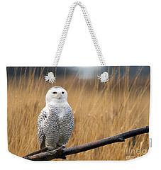Snowy Owl On Branch Weekender Tote Bag