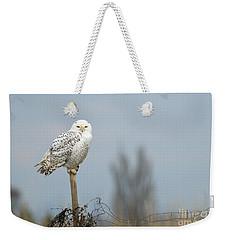 Snowy Owl On Fence Post 2 Weekender Tote Bag