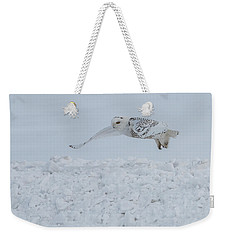 Weekender Tote Bag featuring the photograph Snowy Owl #1/3 by Patti Deters