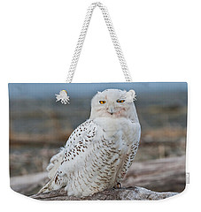 Snowy Owl Watching From A Driftwood Perch Weekender Tote Bag