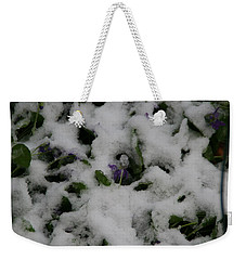 Weekender Tote Bag featuring the photograph So Much For An Early Spring by David S Reynolds