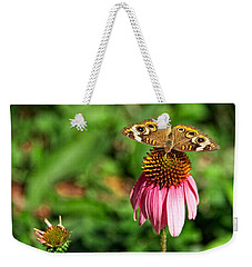 Weekender Tote Bag featuring the photograph Soaking Up The Sun by Dave Files